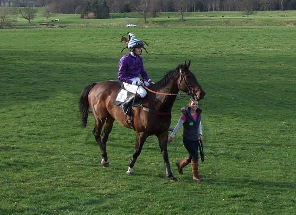 Horse and Jockey at the Duke of Buccleuch's Point to Point.