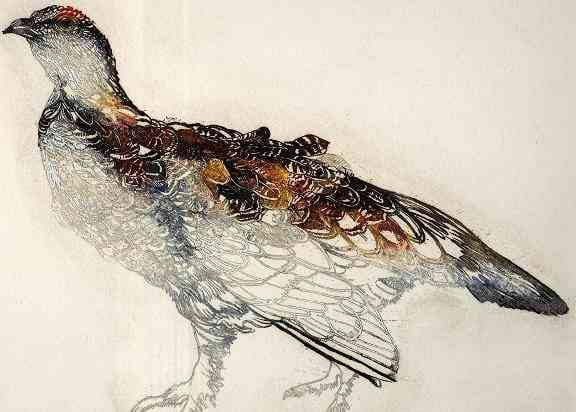 Ptarmigan, Rosamund Jones.