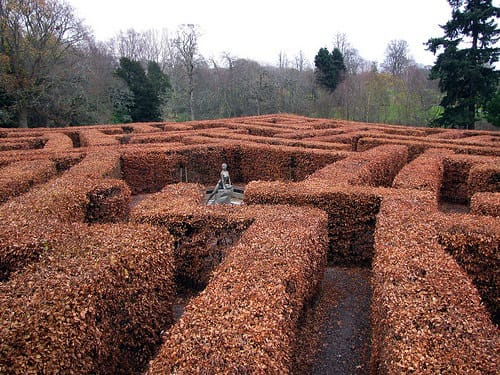 The Star Maze, Scone Palace during winter.
