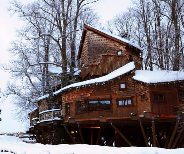 Treehouse-1 alnwick