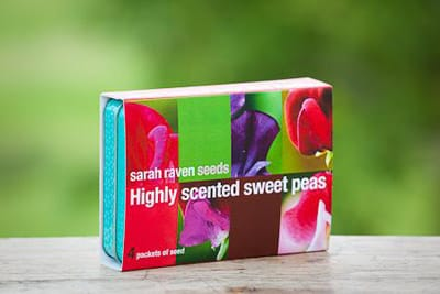 highy-scented-sweet-pea-seed-collection