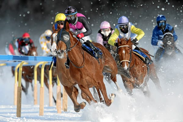 White Turf St. Moritz: Amazing Beauty wins GP Guardaval Immobilien