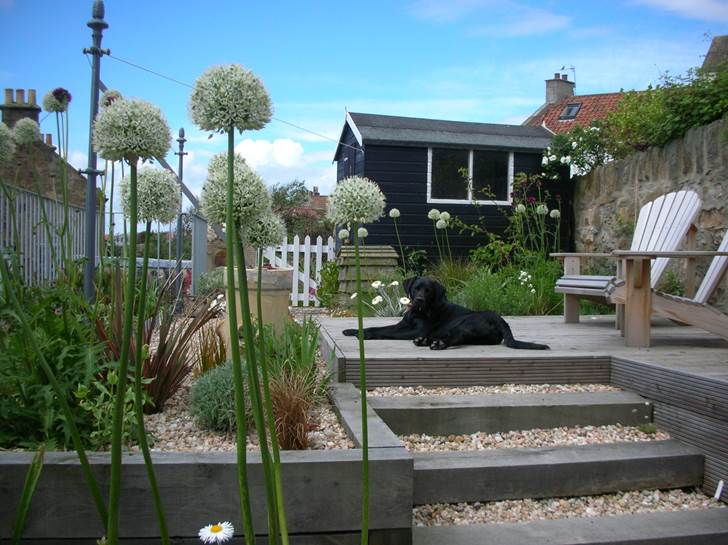 Contemporary Garden, Pittenweem