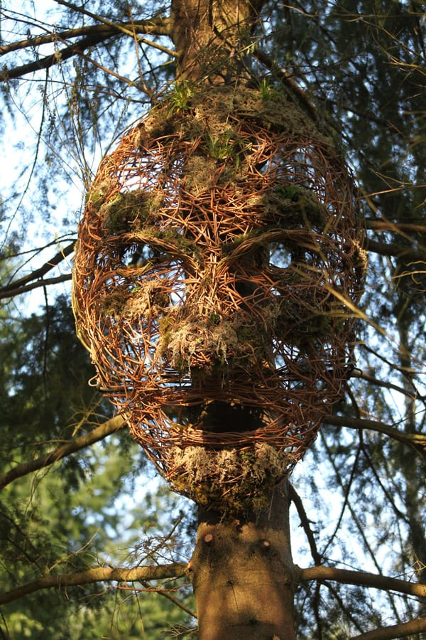 Giants in the Forest, Glentress