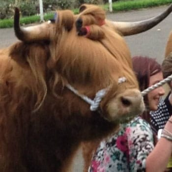 What is The Royal Highland Show?