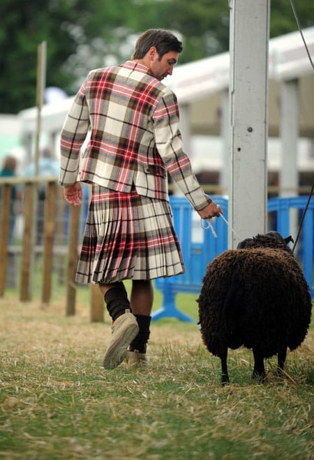 Kilt walk with sheep