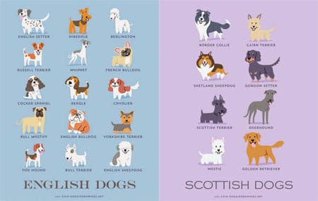 Native Breeds Poster