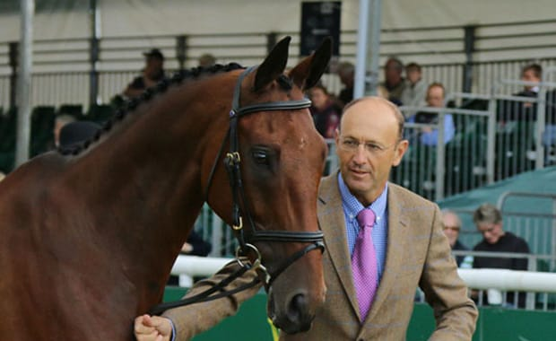 Trot Up Report – Burghley Horse Trials 2015