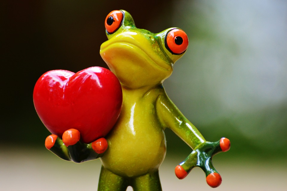 Create your own CGI frog to declare your love