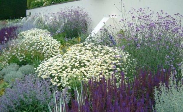 Top Ten Designer Tips to Transform Your Garden