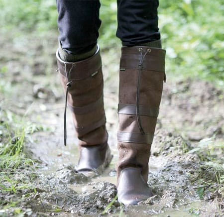 Dubarry 3