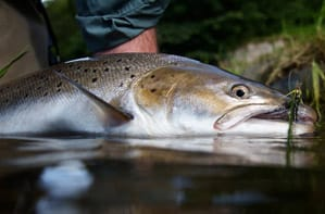 Eoin Fairgrieve talks Spey Casting and Photography