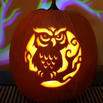 Halloween Pumpkins: It's not too late…