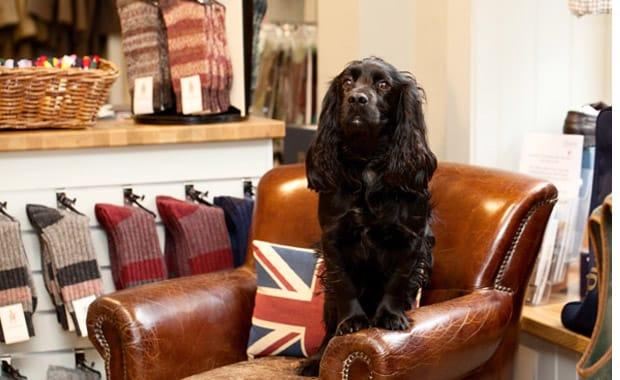 Buy British Day – Saturday 3rd October