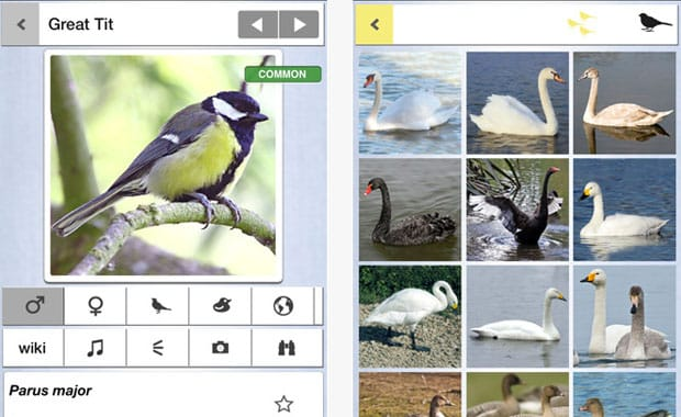 10  Life Enhancing Websites and Apps For Country Life