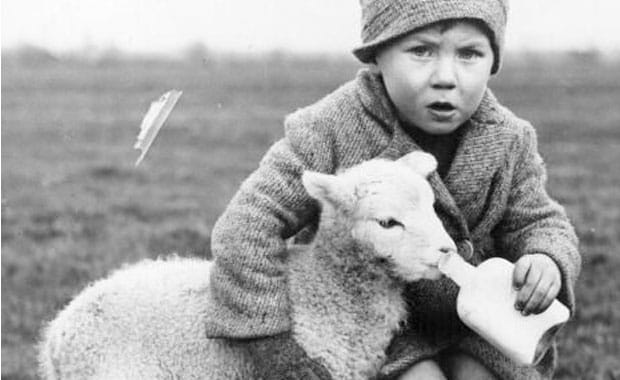 10 Signs You Grew Up in the Scottish Countryside