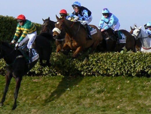 Cheltenham Festival horses jumping